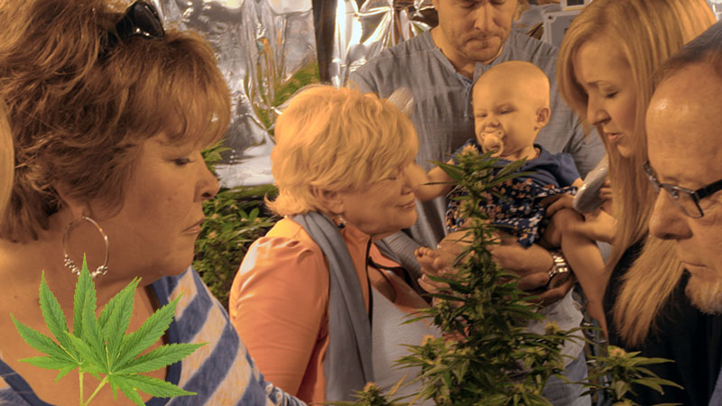 Cannabis Brings People Together In Many Ways